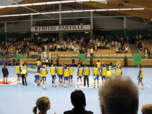 Sverige-Danmark 2008